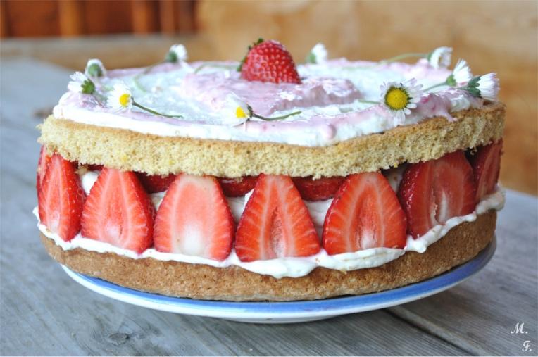28. Vanille-Topfentorte-mit-Erdbeeren-und-Dinkelbiskuitboden von myf(l)avourites